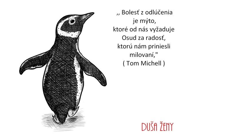 Tučniak ako učiteľ človeka - citát - duša ženy