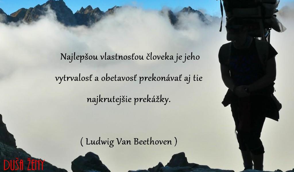 Najlepšou vlastnosťou človeka je jeho vytrvalosť a obetavosť prekonávať aj tie najkrutejšie prekážky - L.V.Beethoven