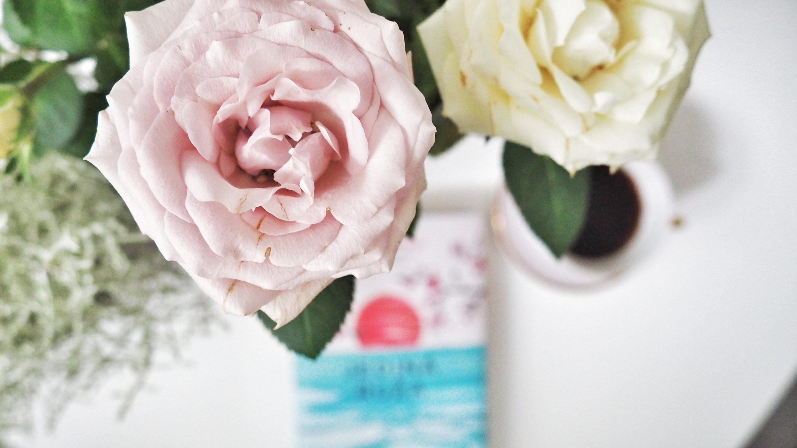 jediná ruža
